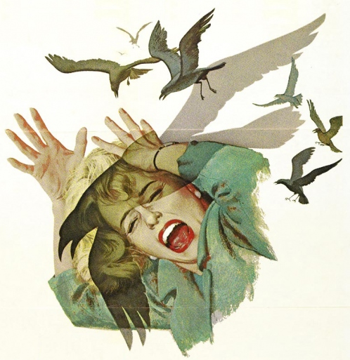 Hitchcocks, 'The Birds'.