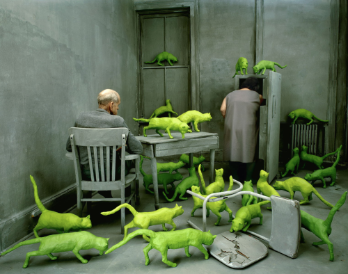 sandy skoglund radioactive cats