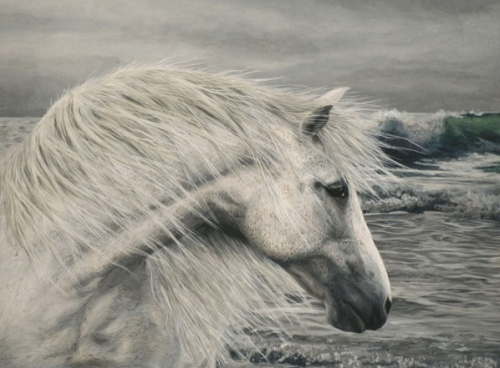 white horse painting